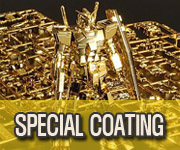 SPECIAL COATING